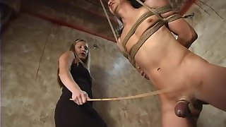 Pretty blonde Harmony gives a blowjob to a toff during the BDSM