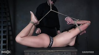 Babe is bound hogtied whipped increased by punished like never before